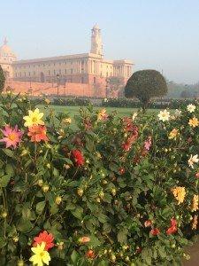 India_New Delhi_5084