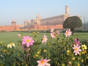 India_New Delhi_5089