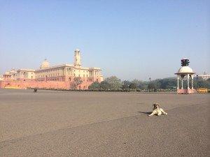 India_New Delhi_5175