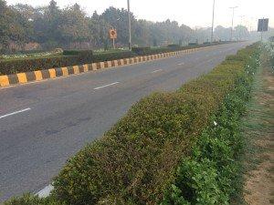 India_New Delhi_5029