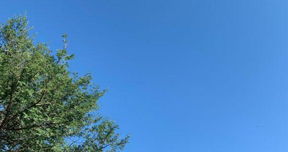 About that blue sky, Delhi…