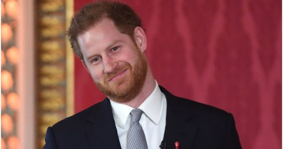 Introducing Prince Harry Middleton
